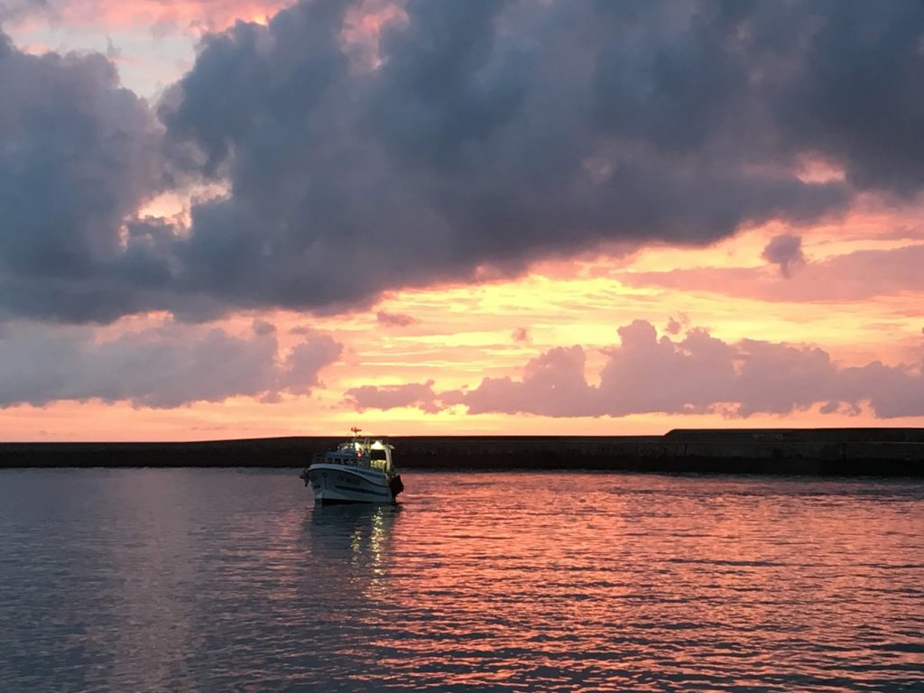 Chalutier La Persévérance peche en mer-04